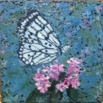 Kathleen Hall, Black & White Butterfly, oil on canvas, 6 X 6, © 2012