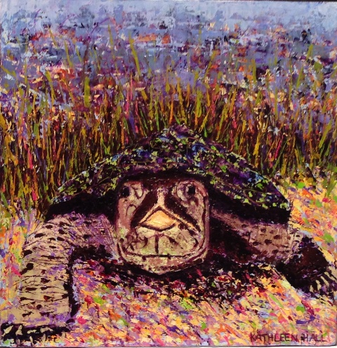 Turtle, oil on canvas, 10 X 10 (c) Kathleen Hall