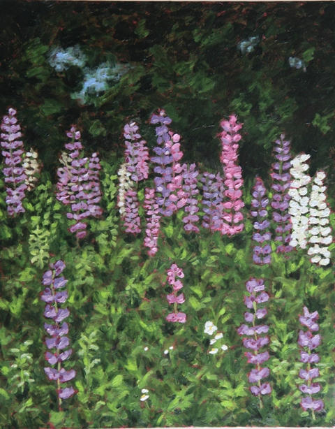 Lupines oil on canvas by Kathleen Hall
